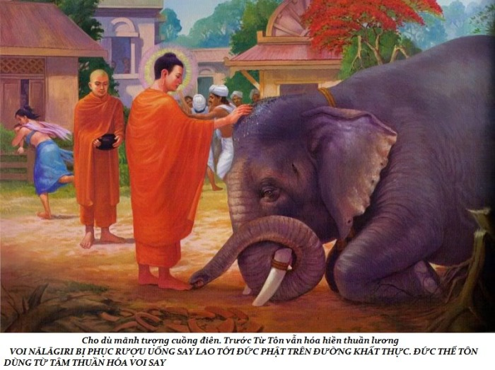 Tám sự tích Phật lực
