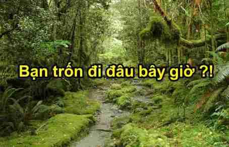Ban_tron_di_dau_bay_gio(