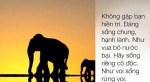 Pham Voi (5)i