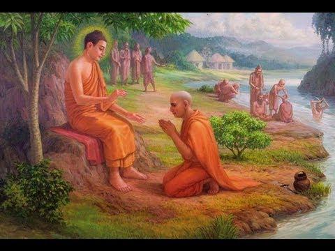 Một Thiền Giả Rối Trí Đến Gặp Đức Phật